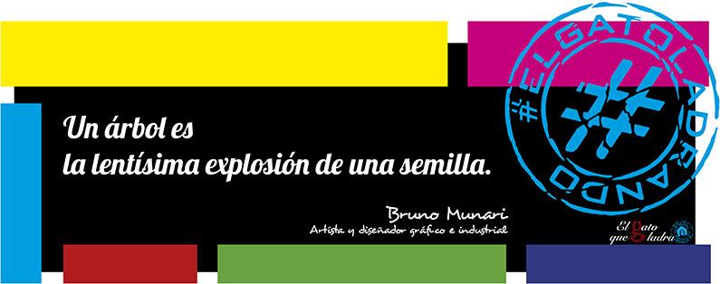 Frase del día, Bruno Munari sobre un árbol